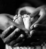 adoption simple plénière