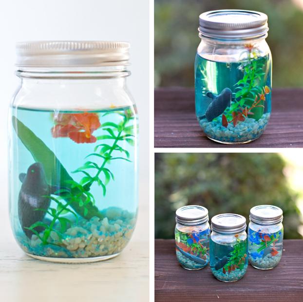 fabriquer un mini aquarium berceau magique le mag. Black Bedroom Furniture Sets. Home Design Ideas