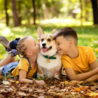 enfants avec leur chien