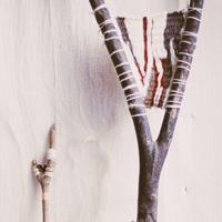 Tisser une branche