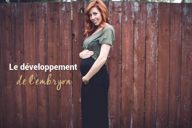 développement-embryon