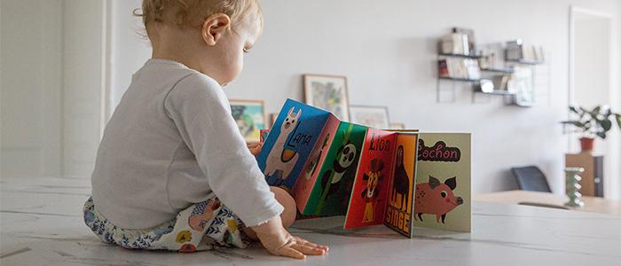 Livres pour bébé